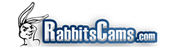 RabbitsCams Sexcams Reviewed